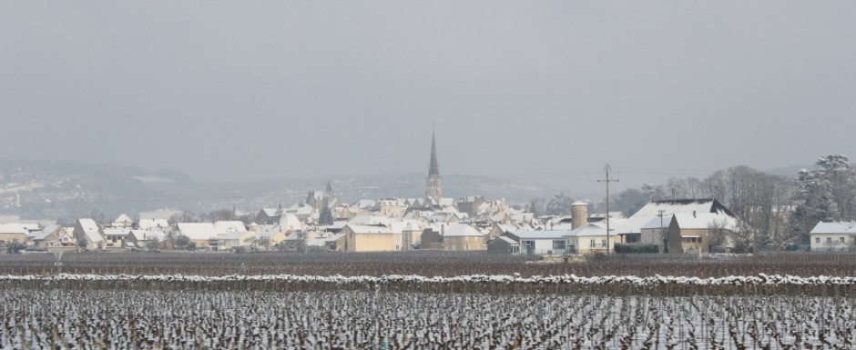 One of our favourite things to do when on holiday in Burgundy in winter is to photograph the stunning vineyards. This is Meursault.