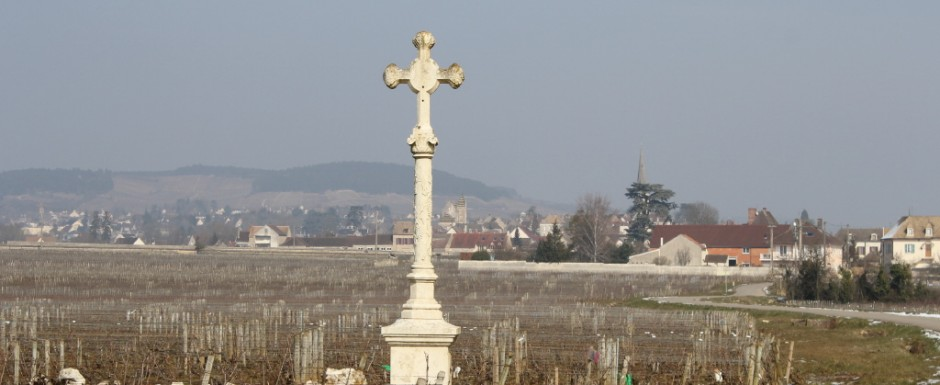 The walks around our holiday rental in Puligny Montrachet are stunning and the photographic opportunities are immense