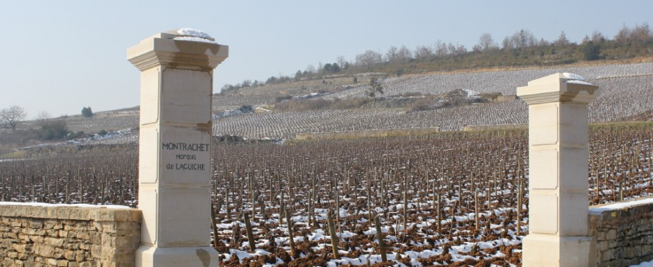 Imagine walking a few paces from our house to see such fabulous vineyards as Montrachet