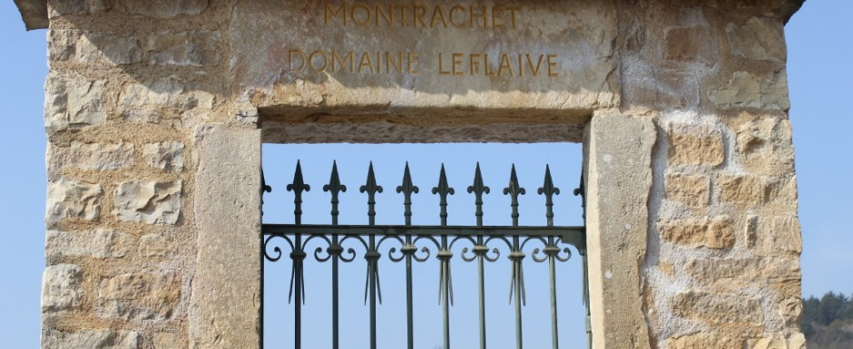 We are so very priviledged to have a holiday home in Puligny Montrachet where the best white wine makers in the world also live and work.