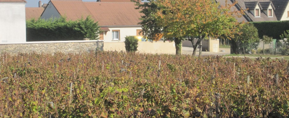 Autumn in Burgundy at our vacation rental property, 10pm